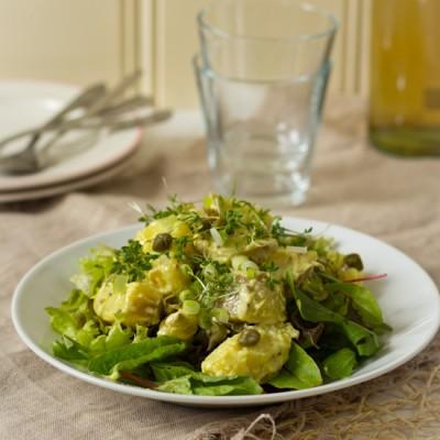 Snelle kruidige lauwe aardappelsalade recept