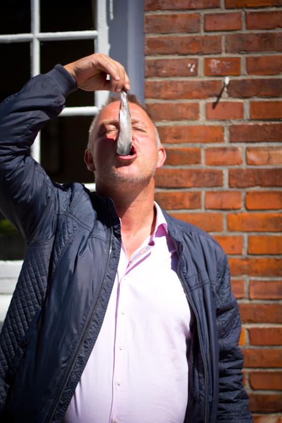 Woensdag Weetjes Hollandse Nieuwe